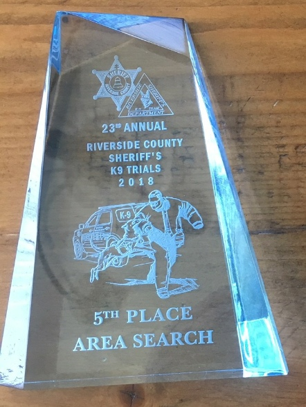Acrylic Award 1