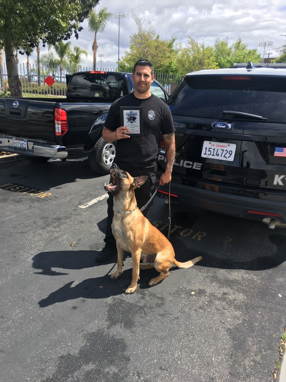 k9 and PO 2